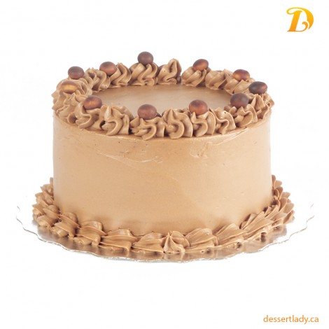 Double Chocolate Cake with Chocolate Buttercream Icing