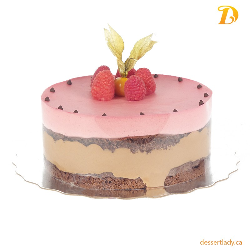 Raspberry Dark Chocolate Mousse Cake