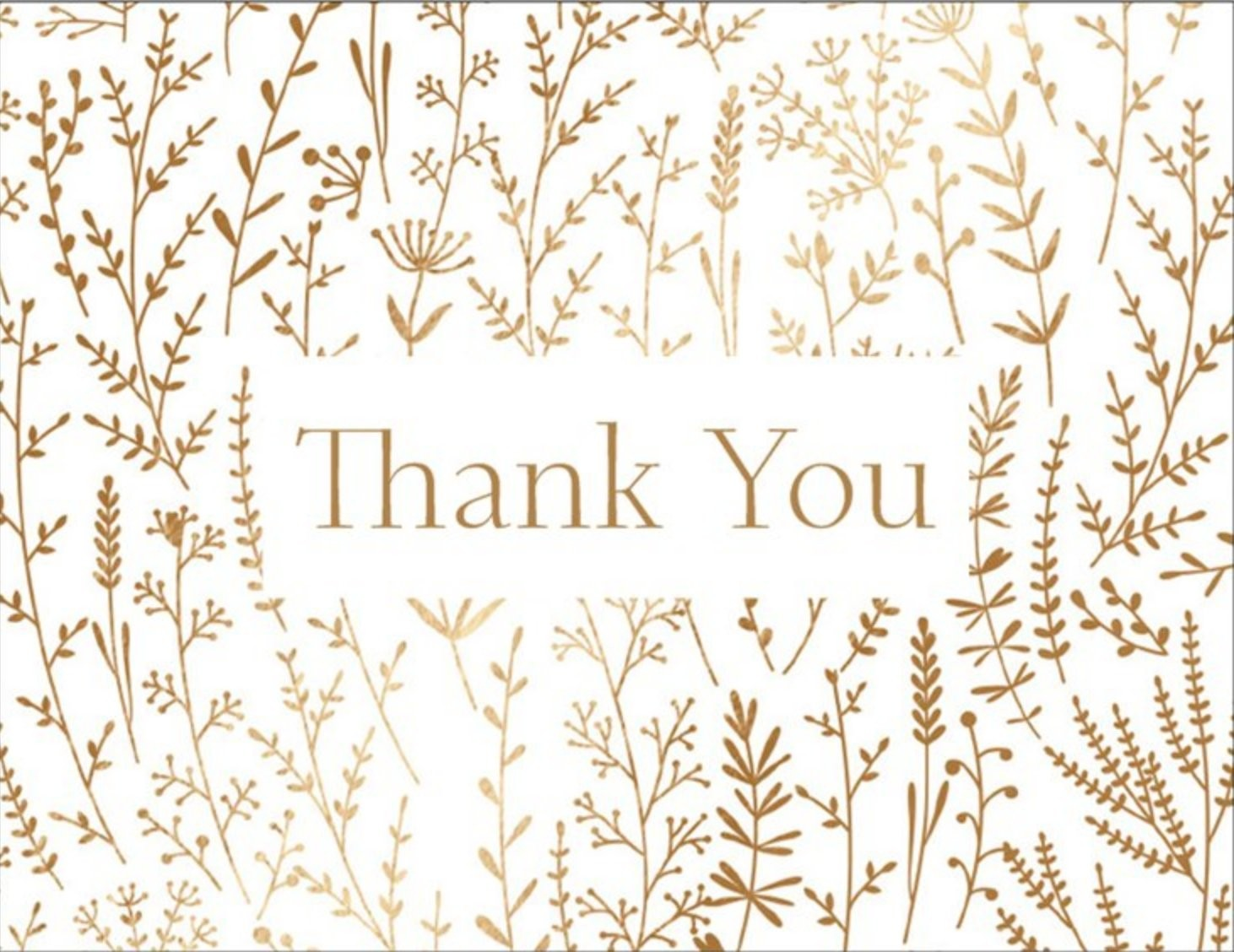 Thank You B - Special Occasion Card